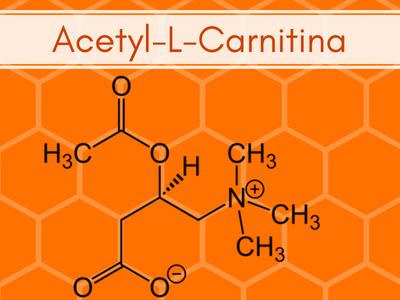 acetyl-l-carnitina integratore